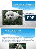 Correa Para Mascotas