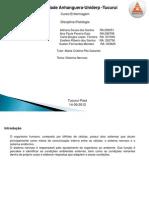 ATPS Fisiologia