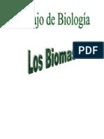 Trabajo biologia- Los Biomas 4º ESO
