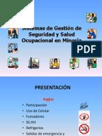 GESTIÓN DE LA SySO V.00