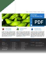 Lab 10 Web Page Mockup