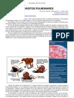 137-parasitos_pulmonares