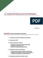10. Trafico Intracelular de Proteinas