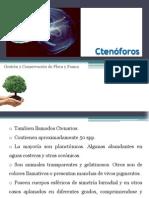 Expo Ctenarios