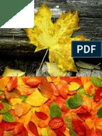 imprimir outono