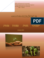 Presentacion Evolucion Del Pensamiento Agroecologico Pirez - Copia