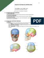 Anatomia - Sistema Articular