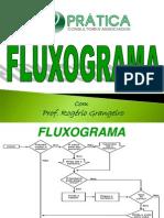 FLUXOGRAMA E PDCA PRÁTICA