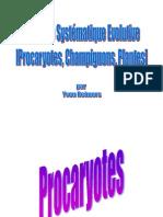 Systématique évolutive _reimers_