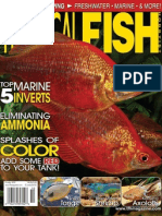 Tropical Fish Hobbyist - Oct, 2012