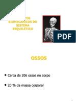 Biomecanica Ossos