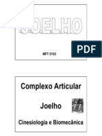 Biomecanica Do Joelho