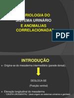 seminriodeembrio-090618081040-phpapp02