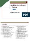 43576855 Software Testing