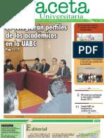 Gaceta 261 11 Diciembre 2010