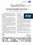 Growing Vegetables From Seed