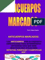 ANTICUERPOS MARCADOS 2012