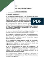 Apuntes Derecho Laboral . Derecho Colectivo Del Trabajo.