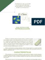 El Cloro. Luis Ruiz