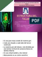 Estructura Del Talamo