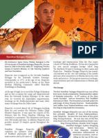 Namkhai Nyingpo Rinpoche- Brochure