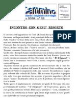 bollettino2009_22