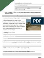 Teste 1- 5º ano- Biosfera, forma e revestimento dos animais (NEE)