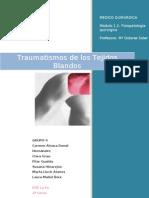 1.2 Grupo5 Traumatismos de Los Tejidos Blandos (1)