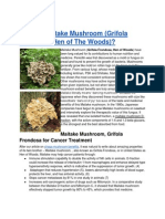 What is Maitake Mushroom (Grifola Frondosa, Hen of The Woods)?