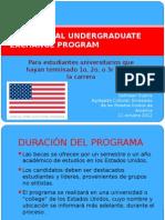 Global U-Grad Presentation 2013