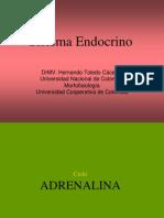 4Red. Ciclos Endocrinos G