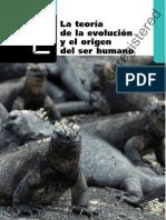 Origen y Evolucion Del Ser Humano (2)