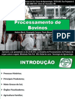 Processamento de Bovinos Final 2012
