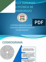 Santiago Martinez Cosmograma 6b