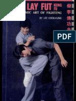 Choy Lay Fut Kung Fu