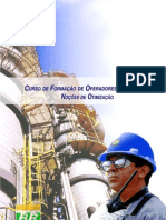Apostilas Petrobras noções de otimização