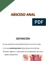 Absceso Anal Pilonidal