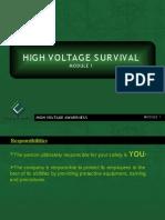High Voltage Survival