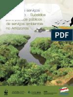 pt - Livro sobre SA na Amazônia 2010