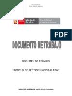 Gestion Hospitalaria Peru