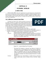 Excel Filtrarea Datelor