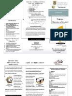 OPUSCULO PROGRAMA DE EDUCACION EN MERCADEO 2014-2015