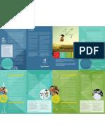 STEM Brochure in English & Español