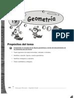 Guia Para Docentes Matematicas 2 - Tema 9 - Geometria