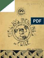 Dibujos Indigenas de Chile