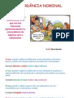 gramática_prof_édina_concordancia_nominal