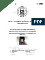 Proyecto de Aula de Formulacion Estrategica de Problemas.pdf