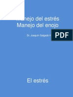 Manejo Del Estres y Enojo