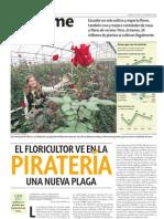 El floricultor ve en la piratería una nueva plaga