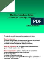 1-histología